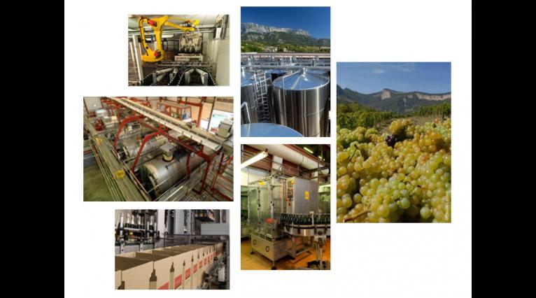 Interview de 2 viticulteurs en biodynamie au sein de la..