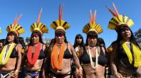 Brésil : des milliers de femmes indigènes manifestent contre la politique de Bolsonaro (vidéo)