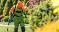 Pesticides : les agriculteurs prévoient de protester contre les zones de non traitement