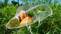 déchets pelouse parcs
