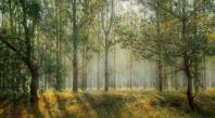 Yann Arthus-Bertrand achète 30 hectares de terres pour revaloriser la biodiversité sauvage