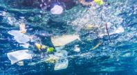 Les vacances d'été, l'occasion rêvée de s'engager dans des actions pour préserver l'océan