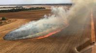 Brésil : les pompiers dans l'enfer des incendies au Pantanal