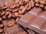 Tablette de chocolat et grain de cacao