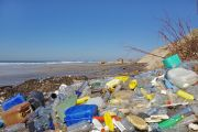 Déchets plastiques échoués sur une plage