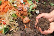 Éco-cleaner, la machine innovante qui révolutionne le compostage