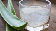 feuilles et gel d'aloe vera