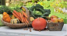 panier de légumes d'hiver disposés sur un table