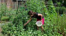 Jeune femme cultivant ses légumes dans son potager