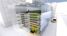 Des salades poussent sur des tapis roulants dans des immeubles en ville
