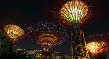 Des arbres métalliques produisent de l'électricité en ville