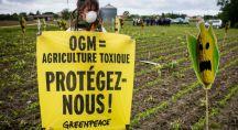 une militante de Greenpeace tenant un panneau