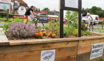 un potager participatif de légumes bio