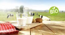 un verre de lait posé sur une table en campagne