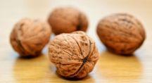 lles noix, un aliment qui réduit le stress et l'anxiété