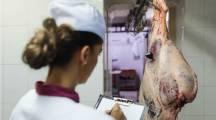 une femme effectue un contrôle dans les abattoirs