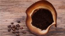 du marc de café dans un filtre à café