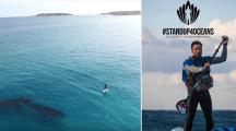 Cet aventurier breton nettoie les plages en stand up paddle