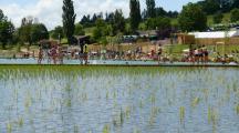 La Belgique ouvre les portes de sa première piscine municipale bio