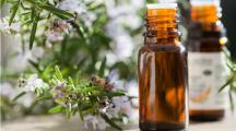 7 huiles essentielles pour passer sereinement ses examens