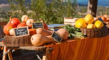 En Corse, ce village survit grâce à la permaculture