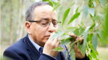 Ce chercheur marocain met au point un antibiotique aux huiles essentielles