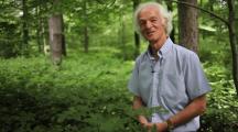 Cet ingénieur forestier nous révèle les secrets des arbres