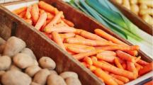 des carottes contaminées aux pesticides
