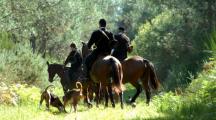 La chasse à courre relance le débat sur la condition animale
