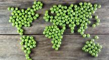 Découvrez ce que deviendrait le monde si nous étions tous végétariens