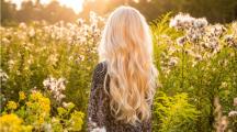 Cinq huiles essentielles pour prendre soin de vos cheveux