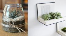 DIY : 10 idées de créations originales pour vos succulentes et plantes grasses
