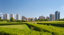 photo jardin de la ville