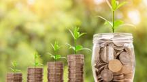 Payé(e) pour être écolo ? Le nouveau credo pour sauver la planète !
