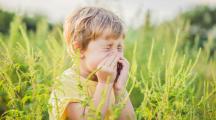 enfant allergique au pollen qui éternue dans un champ