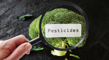 pesticides fruits et légumes