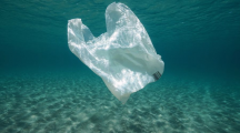 sac plastique mer pollution