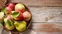fruits et légumes rentrée