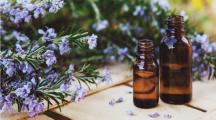 4 huiles essentielles pour une rentrée en pleine confiance