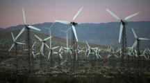 Préserver l'environnement : entre problèmes et solutions
