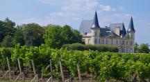 Château bordelais avec vignes