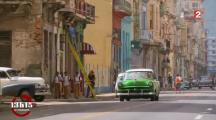 Comment Cuba est devenu un paradis pour abeille