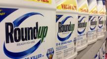 Le Roundup est l'herbicide à base de glyphosate, commercialisé par Monsanto.