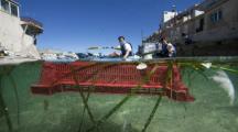 Marseille : 1,2 tonne de déchets ramassés lors d'une course en kayak