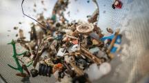 Les humains ingèrent des dizaines de milliers de particules de plastique par an, selon un rapport