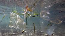 La France, plus gros producteur de déchets plastiques en Méditerranée