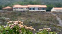 Gouvernement, agriculteurs, écologistes : polémique autour de la distance minimale entre habitations et zones d'épandage