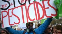 La Seine-Saint-Denis prend un arrêté anti-pesticides