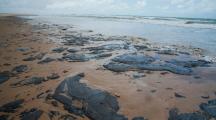 Mystérieuses marées noires au Brésil : un désastre