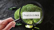 A regarder ce mardi à la TV : « Pesticides, peut-on encore y échapper ? »